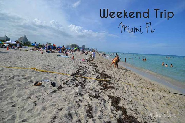 Miami Weekend Trip